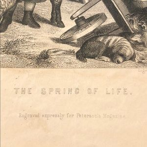 """Vintage Wall Art - The Spring of Life 9"""" x 5.5"""" - Antique Engraving"""